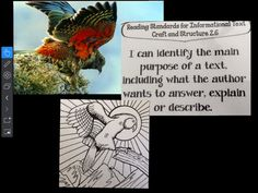 Using @quivervision to help my students @PaulCuffee learn about informational text. Make their art work come 2 life!