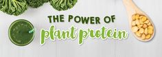 The power of plant protein - NuZest Clean Lean Protein Protein Cake, Plant Protein, Berry Plants, Sports Nutrition, Natural Health, Berries, Herbs, Group, Food