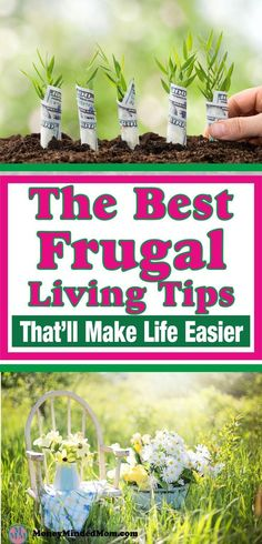 Frugal Living. Smart decisions about how you spend your money. #NewRules #CronesRising