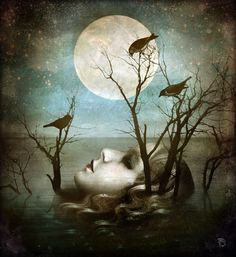 Deep Sleep by Christian Schloe
