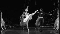 16 coisas que só quem é bailarina entende 5. Seu sonho é fazer um pas de deux.