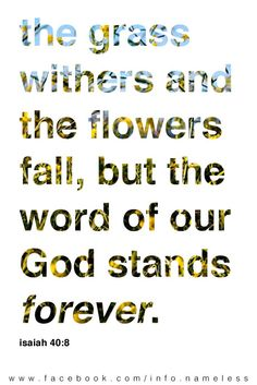 The grass withers and the flowers fall, but the word of our God stands forever - Isaiah 40:8