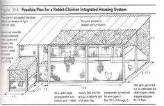 A great idea for Rabbits/Chickens pen together to save space and materials. I'm going to work on building one of these.