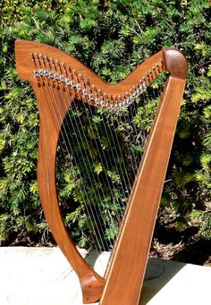 Graceful, 29 String Minstrel Harp.   *Natural Finish Rosewood.  http://www.celticrenaissancemusic.com/harps