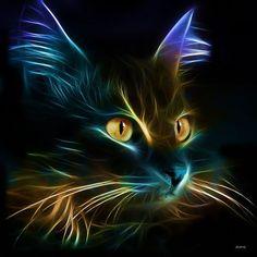 https://www.facebook.com/catlovers.shirt/photos/a.1017479498297992.1073741828.1017475258298416/1146165265429414/?type=3