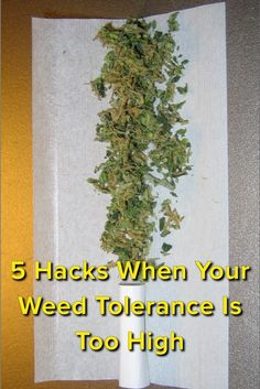5 Hacks When Your Weed Tolerance Is Too High