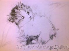 Little kitten by Agnes Varnagy Gallery