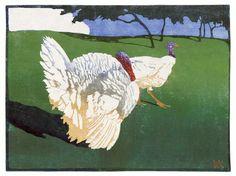 Walther Klemm: Truthühner, 1908. Turkey © HVMSG