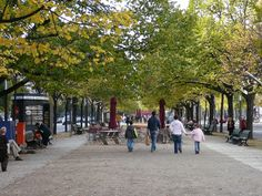 Unter Den Linden in Berlin. Tree Poem, Things To Do, How To Memorize Things, Continental Europe, Berlin Germany, The Neighbourhood, Beautiful Places, Poems, Street View