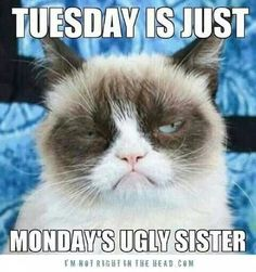 Tuesday is just Monday's ugly sister.