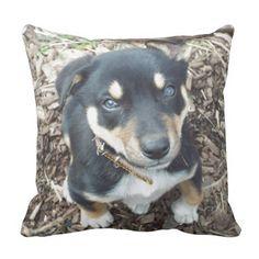 Customise Product kelpie pup