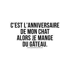 C'est l'anniversaire de mon chat alors je mange du gâteau - #JaimeLaGrenadine >>> https://www.facebook.com/ilovegrenadine >>> https://instagram.com/jaimelagrenadine_off/
