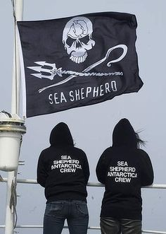 Japanese volunteers join anti-whaling fight http://www.watoday.com.au/world/japanese-volunteers-join-antiwhaling-fight-20130201-2dq14.html# @SeaShepherd #defendconserveprotect