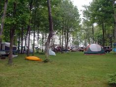 Breakneck Campground is nestled among pines and open areas, ideal for tenting. Located by McConnell's Mill State Park and a 10 minute drive to Moraine State Park. Complete with modern facilities, Breakneck is a quiet and beautiful campground for campers, hikers, kayakers and outdoor lovers. Pets welcome! Certificates available at https://www.visitbutlercounty.com/special-offers/butler-county-gift-certificates