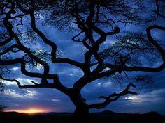 http://all-images.net/fond-ecran-paysage-nature35/
