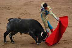 Bullfighting in Spain -- still a tradition but controversial
