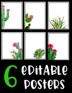 Editable Posters - Classroom Rules - Cactus - Succulents - Decor