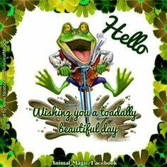 Hello Hello Goodbye, Animal Magic, Morning Blessings, Happy Day, Beautiful Day, Good Morning, Wish, Blessed, Joker