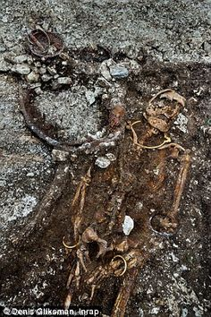 The skeleton (above) was found still wearing a solid gold torque and bracelets. Experts are baffled as to whether the grave belonged to a Celtic prince or princess