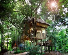364 best treehouse images treehouses cool tree houses cottage rh pinterest com