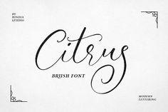 Citrus Script by Hindia Studio on @creativemarket