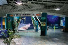 Stair graphic in aquarium has context and is extremely artistic
