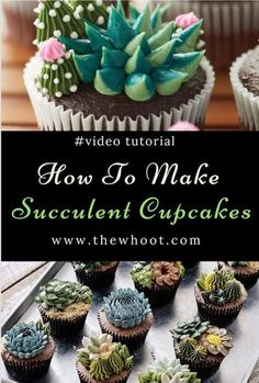 Succulent Cupcakes Tutorial Easy DIY Video Instructions Sukkulenten Cupcakes Tutorial Einfache DIY Video Anleitung<br> You are going to love this Succulent Cupcakes Tutorial that shows you how to pipe gorgeous buttercream flowers. Watch the video now. Cupcakes Succulents, Cactus Cupcakes, Cactus Cake, Flower Cupcakes, Strawberry Cupcakes, Easter Cupcakes, Christmas Cupcakes, Spring Cupcakes, Cupcake Piping