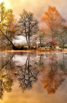 Photography Secrets The Pros Don't Want You To Know Scenic Photography, Landscape Photography, Nature Photography, Photography Tips, Digital Photography, Fall Pictures, Pretty Pictures, Photo Backgrounds, Beautiful World