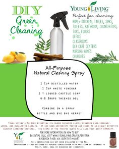 All-Purpose Cleaning Spray Recipe.  To order essential oils, visit my website www.youngliving.org/culpepperck
