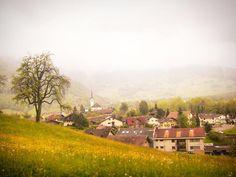 Assim como em vários outros países da Europa o interior da Suíça parece que foi pintado por um talentoso artista. Olha que linda essa paisagem vista de dentro do trem rumo a Interlaken.  Vontade de voltar e viajar mais por essas cidadezinhas!  Para ver todas as postagens da nossa série Volta ao Mundo clique na hashtag #voltaaomundocompegadas  #suiça #switzerland #pegadasnaestrada #europa #viagem #travel #travelblog #viajar #braroundtheworld #viajenaviagem #amazing #europe #bestvacations…
