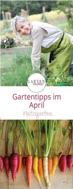 Gartentipps / Gartentipp / Nutzgarten / April / Frühling / Gartenarbeit / Garten / Gärtnern