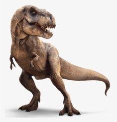 T Rex Jurassic Park, Jurassic Park World, Dinosaur Art, Dinosaur Fossils, Dinosaur Pics, Illustration Photo, Illustrations, Jurrassic Park, Extinct Animals