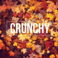 Perfect for autumn. #autumnleaves #autumn #fall #oranges #leaves #leaf #nature #naturephoto #typography #quote #crunchy #crunchyleaves #autumncolors