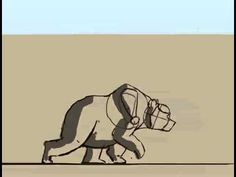 bear Walk cycle animation - YouTube