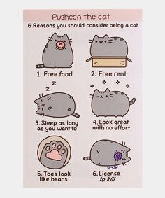 Buy Pusheen Maxi Poster - Reasons to be a Cat online and save! Pusheen Maxi Poster – Reasons to be a Cat Maxi Poster 61 × Our posters are rolled, wrapped and shipped in poster mailing . Gato Pusheen, Pusheen Shop, Pusheen Stuff, Pusheen Plush, Pusheen Unicorn, Pusheen Stickers, Cute Stickers, Crazy Cat Lady, Crazy Cats