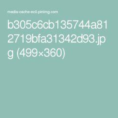 b305c6cb135744a812719bfa31342d93.jpg (499×360)