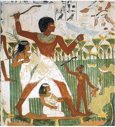 Tomb_of_Nakht_(9).jpg (752×828)