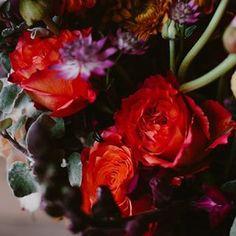 Bulb Flowers (@bulbflowers_ct) • Instagram photos and videos Bulb Flowers, Bouquets, Photo And Video, Rose, Videos, Plants, Photos, Instagram, Pink