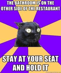 Anxiety Cat: The bathroom is on the other side of the restaurant. Stay in your seat and hold it.