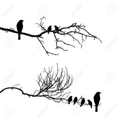 vector silhouette of the birds on branch (tattoo, silhouette, tree)