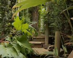 Een landelijke tuin voor luxe country-hotel in Italië. – TUINENSTRUINEN.ORG Video Channel, Garden Inspiration, Plants, Gardens, Van, Lush, Outdoor Gardens, Plant, Vans