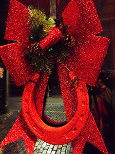 Red Horseshoe :-)