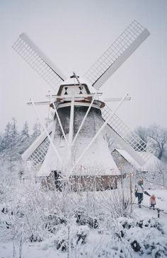 Dutch Winter.... ♥