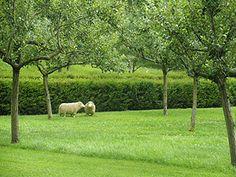 Omdat het leven vroeger meer zelfvoorzienend was, was een boomgaard heel nuttig om te hebben.