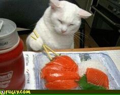 MMMMM sushi