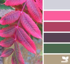 Autumn Color - http://design-seeds.com/index.php/home/entry/autumn-color2