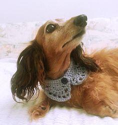 Perro de bufanda Collar de perro Bandana perro perro