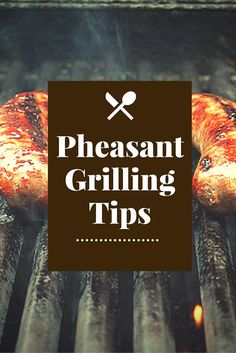 Time for a Pheasant Barbecue! > Pheasant For Dinner Grilling Tips, Grilling Recipes, Gourmet Recipes, Venison Recipes, Chicken Recipes, How To Cook Pheasant, Alligator Recipe, Pheasant Recipes, Cooking Tips