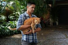 Photos - Magnum PI - Season 1 - Promotional Episode Photos - Episode - The Cat Who Cried Wolf - Jay Hernandez, Adam Rodriguez, Magnum Pi, Tom Selleck, Hawaii Five O, Private Investigator, Tv Guide, Good Looking Men, Tv Shows