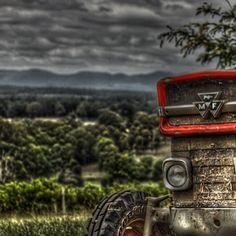 Massey Ferguson tractor in the Hunter Valley, Australia.